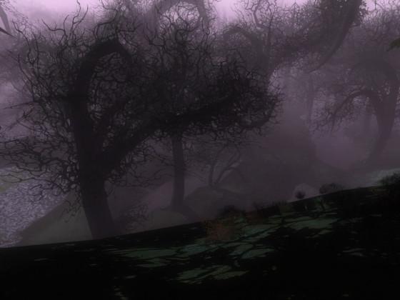 Der Düsterwald schön düster